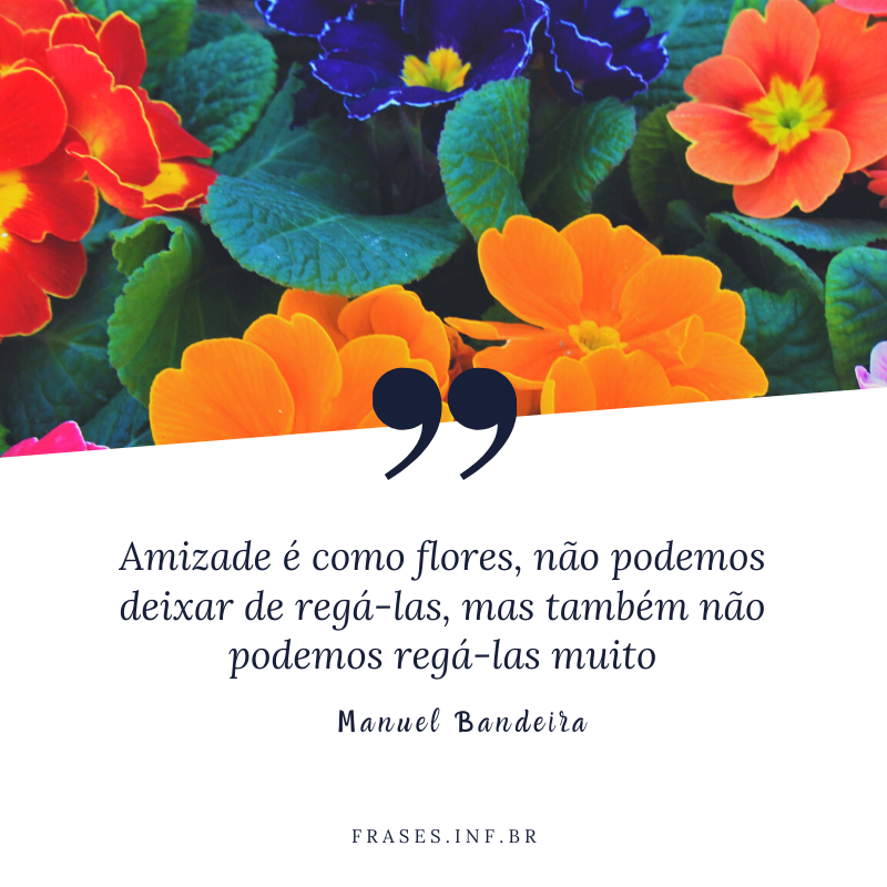 Frases de amizade de Manuel Bandeira
